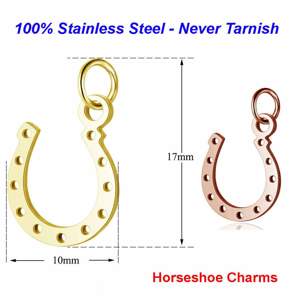 5pcs/lot 316L Stainless Steel Horseshoe Charms 100% Steel Lucky Symbol diy Handmade Jewelry Finding supplies Charm Pendant