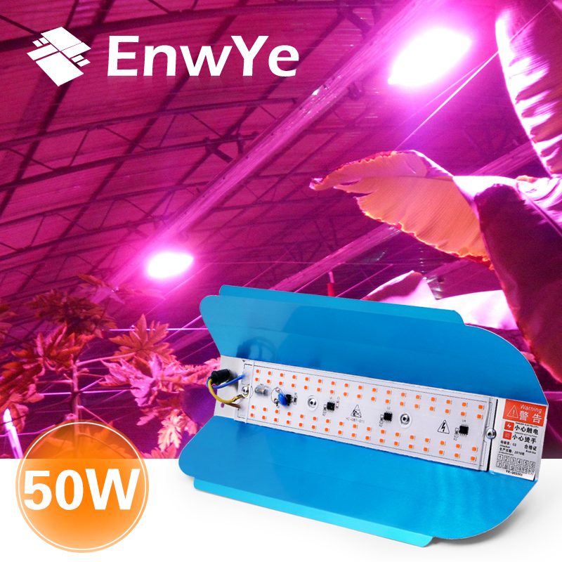 EnwYe 50W Plant growth lamp LED Grow Light Phyto Simple floodlight 220V For Plant Greenhouse Hydroponic(China)