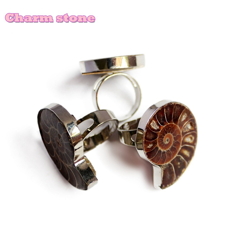 Natural Conch Ring Gifts Fashion Jewelry Women Exquisite Spot Color Screw  Beautiful Marine Fossils Open Adjustable Ring