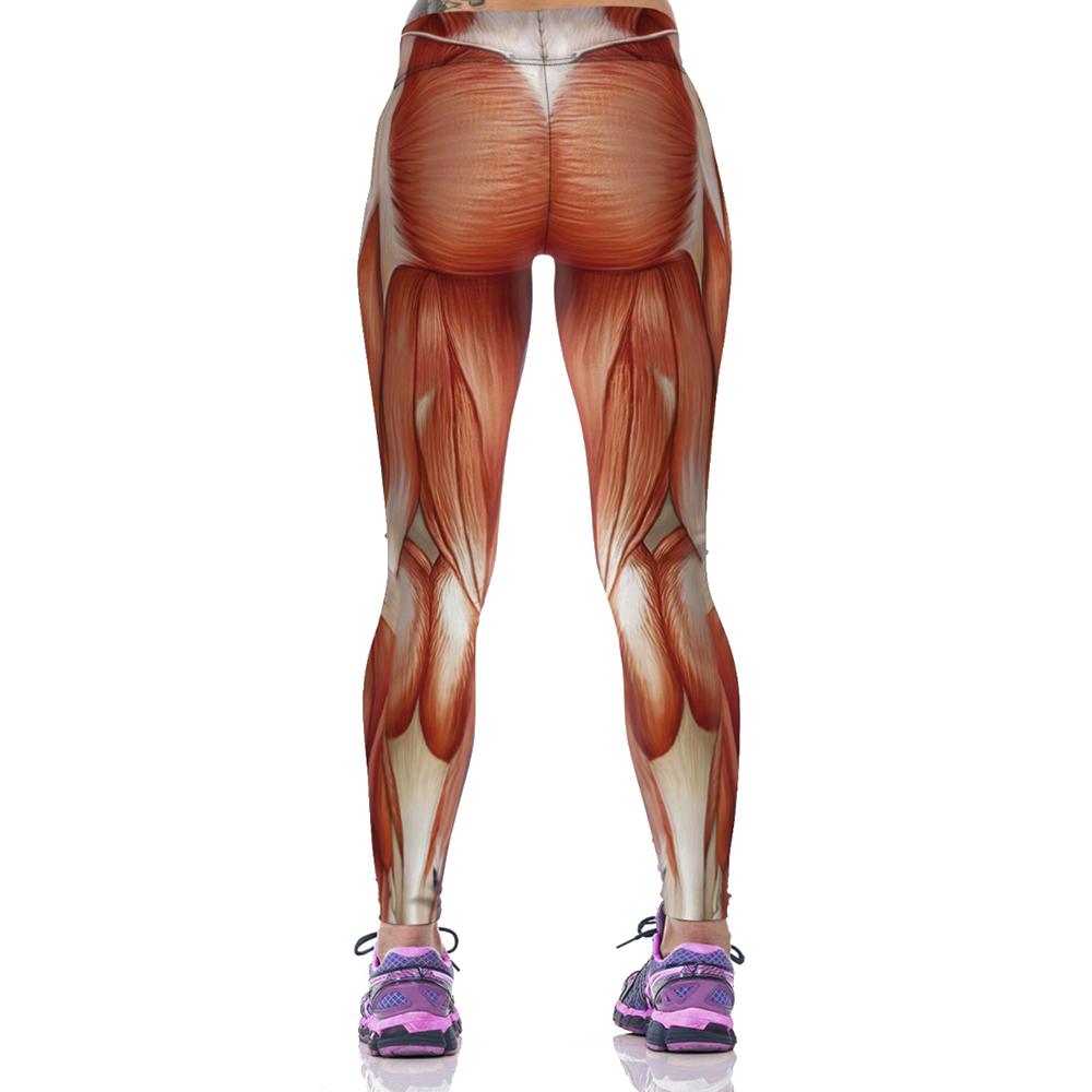 EAST-KNITTING-F1473-Fashion-Women-New-Sports-Leggings-3D-Sexy-Muscle-long-length-leggings- (1)