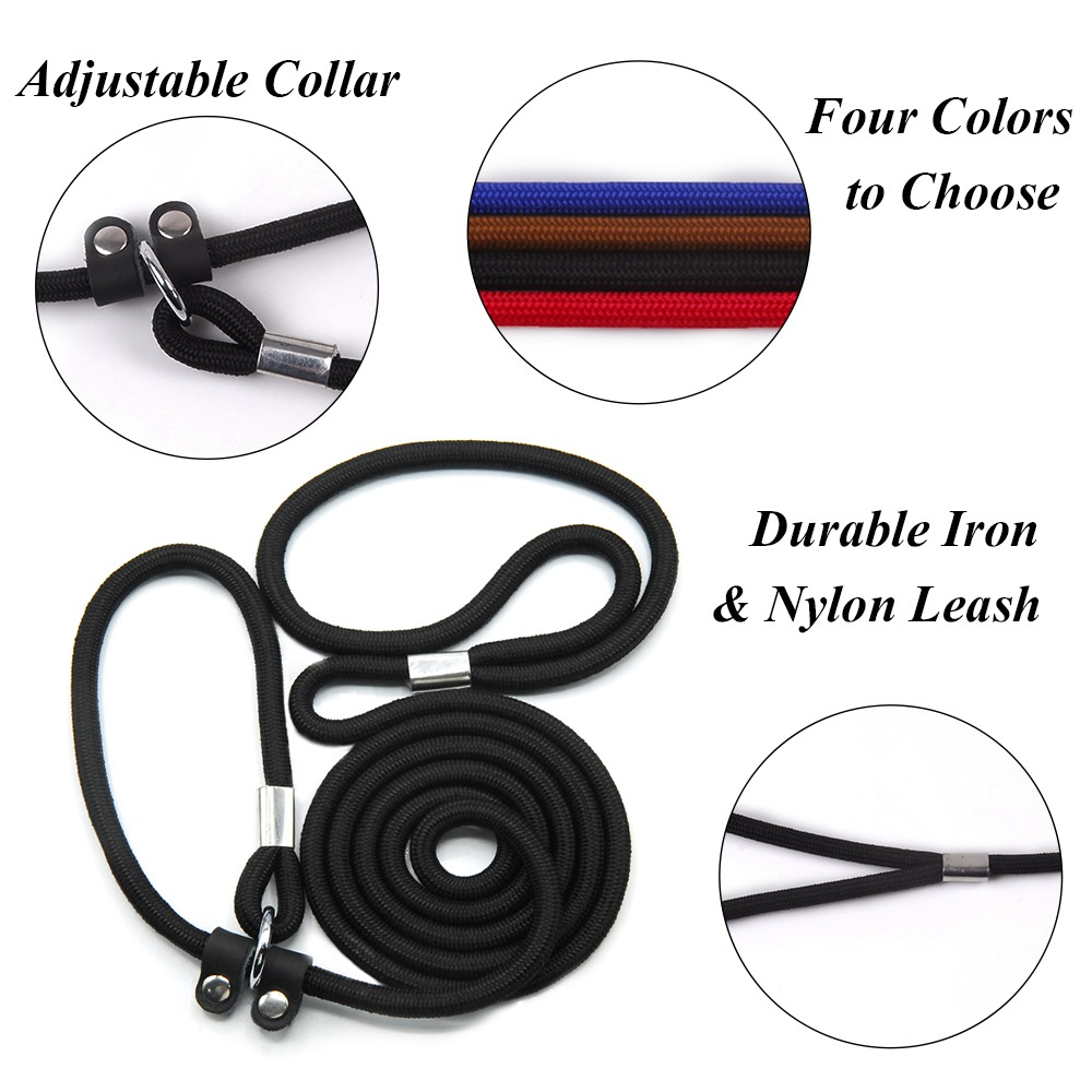 Dog Leashes For Small Dogs Nylon Puppy Leashes Chihuahua Pet Training Leads Collar For Dogs Cats Leash For Dogs Accessory py0229 (5)