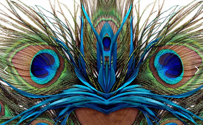 Custom Photo Wallpaperpeacock Feather 3d Wallpaper Mural For
