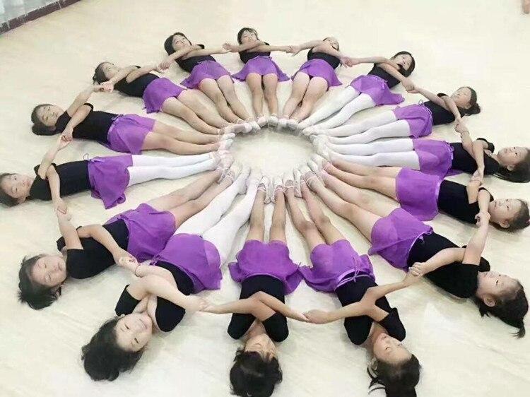 Classical Ballet Tutus (2)