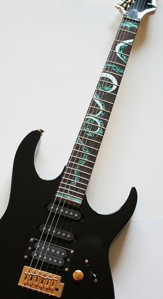 Marqueurs Fretboard autocollants incrustés pour serpent torsadé à la guitare