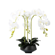 INDIGO-(3 flower+3 leaves) Flower Arrangment White Orchids Real Touch Wedding Party Decorative Event Free Shipping