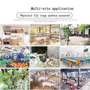 Image 4 - 2019  Pest Catcher Killer for Hotel Indoor Automatic Caught Fly Killer  convenient and  practical Household HOT Sale product