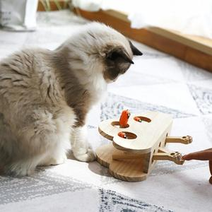 Solid Wooden Cat Toy Puzzle In