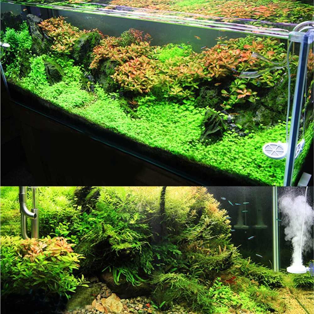 Nicrew 3. Generacji algi usuń Chihiros Doctor elektroniczny hamulec zielony filtr pompy do akwarium ryba roślina wodna zbiornik