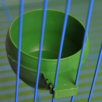 Top Parrot Aviary Pet Cage