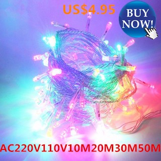 Lighting Strings Garland AC220V110V 10M100 led 20M30M50MChristmas Holiday Wedding Party Decoration L