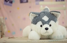 small husky dog toys plush gray husky dog doll simulation husky dog toy birthday gift about 55cm