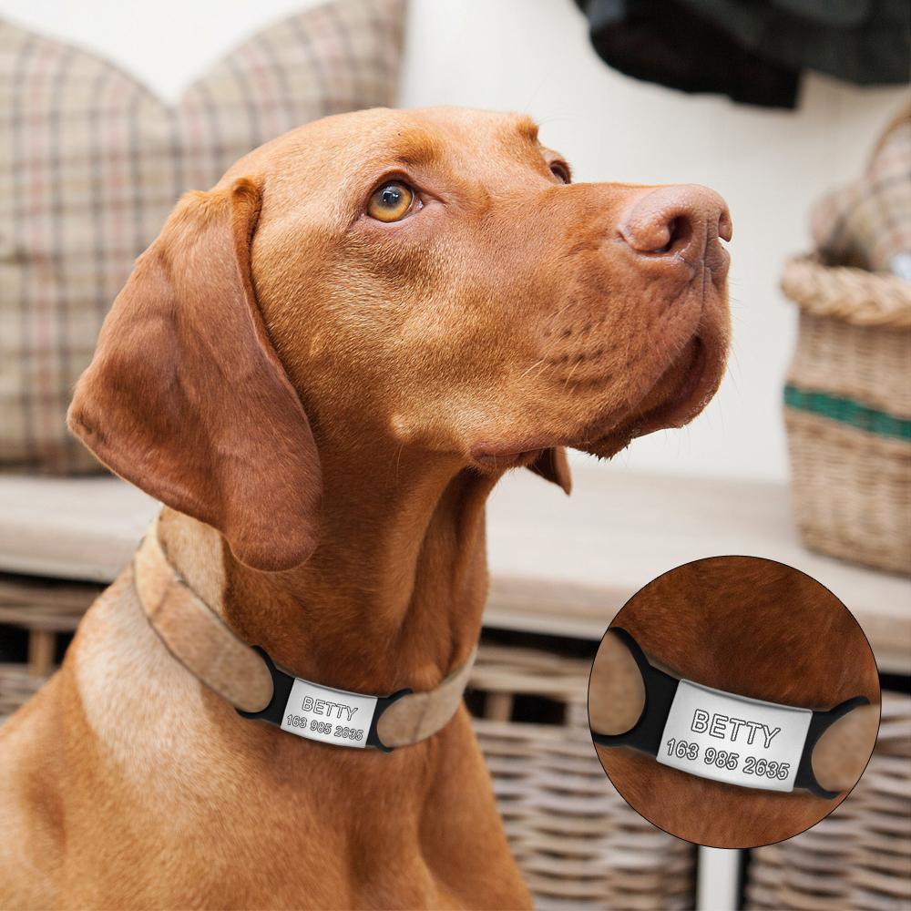 Placas de identificación para mascotas de acero inoxidable personalizadas 13
