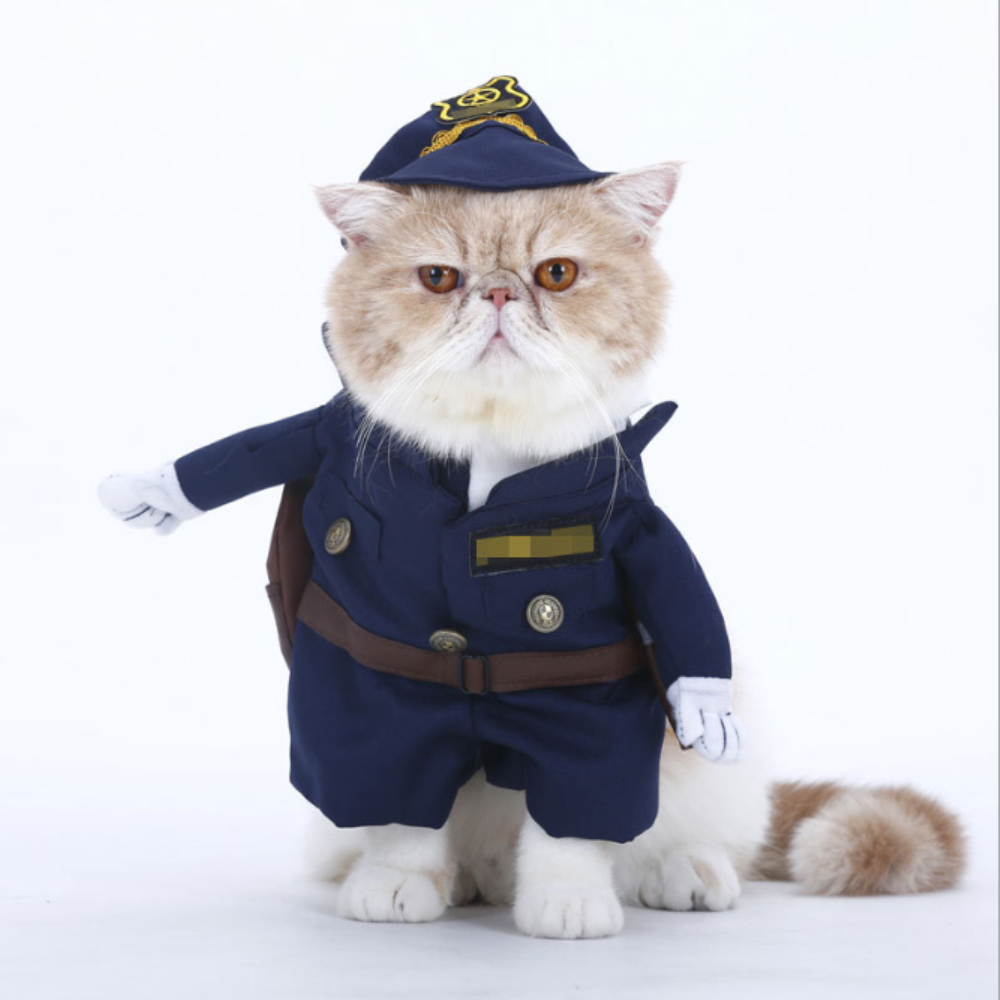 Картинки с котами полицейскими