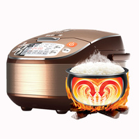 Famous Intelligent Rice Cooker 5L 220V Household Electric Rice Maker Machine 4 5 6 7 8 People Reservation Timing