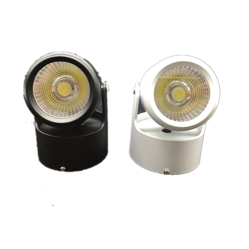 20w Led Surface Mounted: LED Downlight 10W 20W 85 265V COB LED DownLights COB