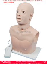 MANIKIN BODY MEDICAL TRAINING MANIKINS  SIMULATORS  MANIKINS NASAL CAVITY EXAMINATION MODEL ELECTRONIC MONITORING-GASEN-CSM0048