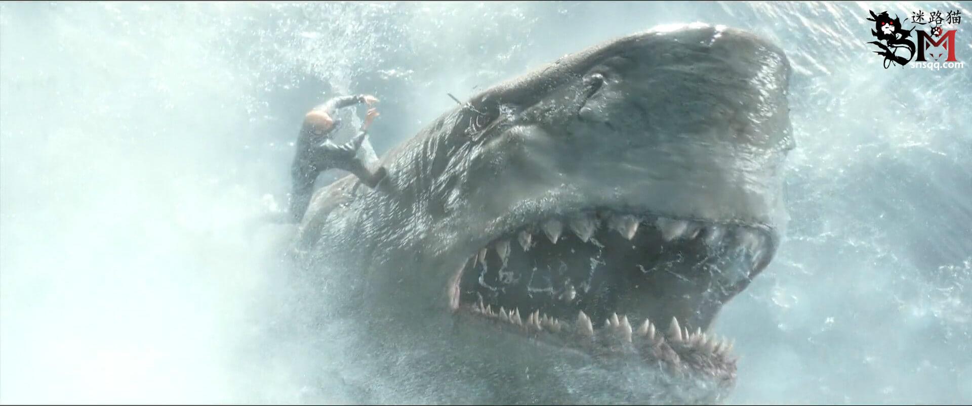 《巨齿鲨》著名跳水运动员郭达斯坦森大战鲨鱼辣椒