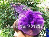 Wholesale Lingerie Costume Party Fascinator Purple H112