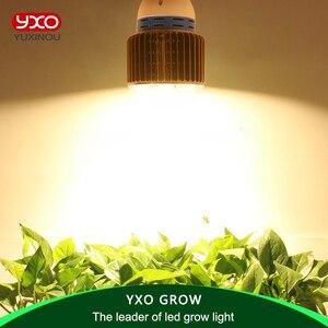Image 2 - 1 قطعة كشاف CREE CXA2530 CXA3070 100 واط مصباح LED كامل الطيف للنمو يحل محل لمبة نمو النباتات الداخلية HPS 200 واط