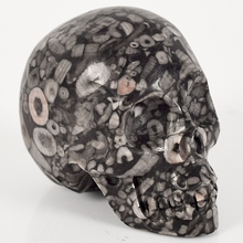 2.0 Inch Natural Crinoid Jasper Crystal Skull  handmade Healing Crystal Feng Shui Carved Skeleten  Statues Sculptures Crafts