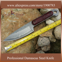 DT088 new style damascus steel knife hand made fixed hunting knife camping knife man gift