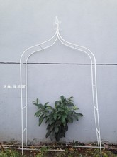 Climbing frame Wrought iron flower arch cosmetic Cany on grape wedding iron frame
