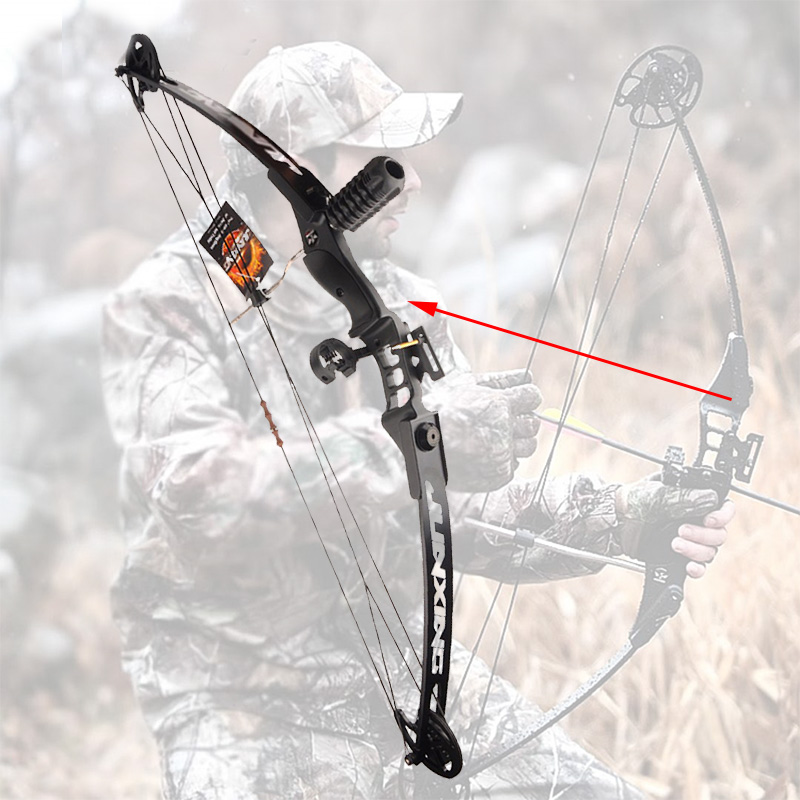 купить Archery Hunting 30-40 LBS Compound Bow Right Hand Adjustable Bow Set for Shooting Fishing Target Outdoor Practice по цене 6050.42 рублей