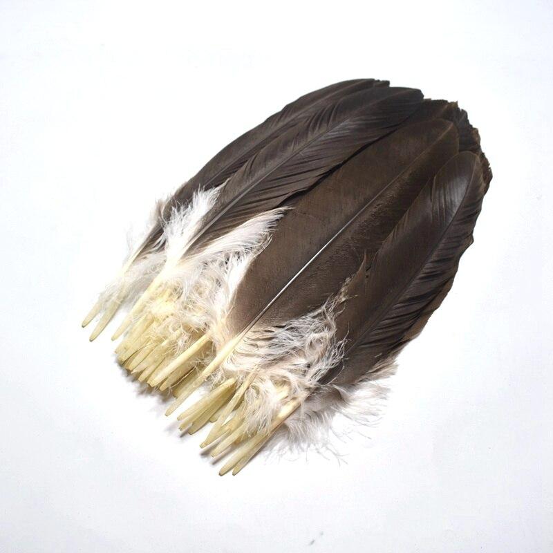 "50 Pieces bulk 8-10/"" NATURAL Ringneck Pheasant Tail Wholesale Feathers"