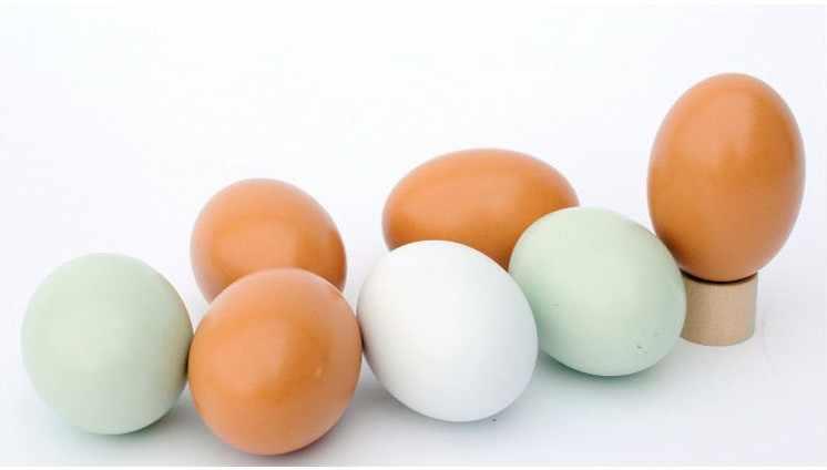 1 PC Unggas Simulasi Kayu Palsu Telur Ayam Bebek Angsa Menetas Inkubasi Peternakan Rumah Lukisan Mainan Kerajinan Kayu Meter Persegi 007
