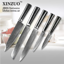XINZUO 73 layers 5 pcs chef knife Japanese VG10 Damascus stainless steel kitchen knife sets with Micarta handle free shipping