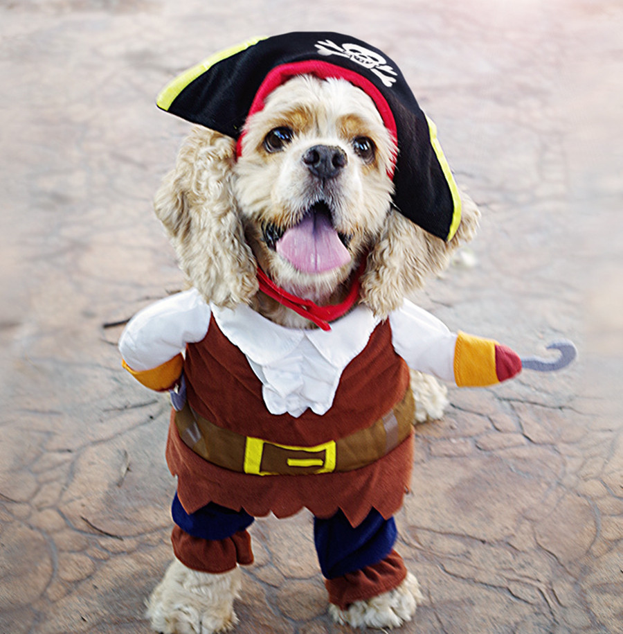 Забавный животное одежда кошка костюмы для маленьких собак одежда щенок одежда наряд пальто пират disfraz де гато перро 35