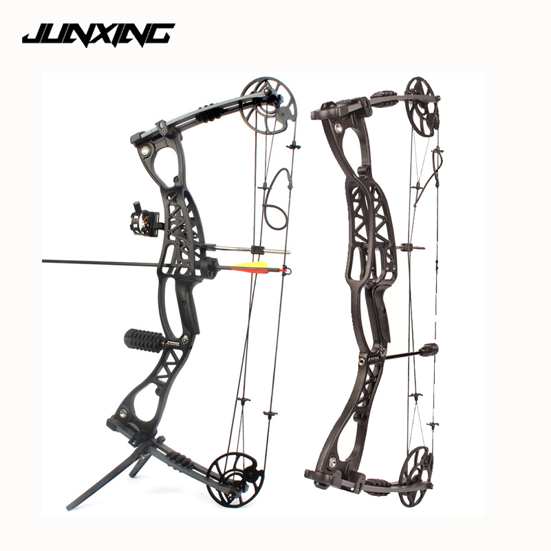 2 Style Adjustable 40-65 LBS Compound Bow 30 Inch Speed 300 Feet/s For Outdoor Archery Hunting Shooting Professional Training