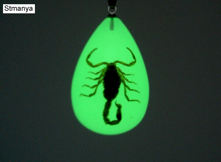 Luminous  Real Scorpion Key Chain - New Luminous Product Real Crab And Scorpion Keychain Bag Car Key Ring
