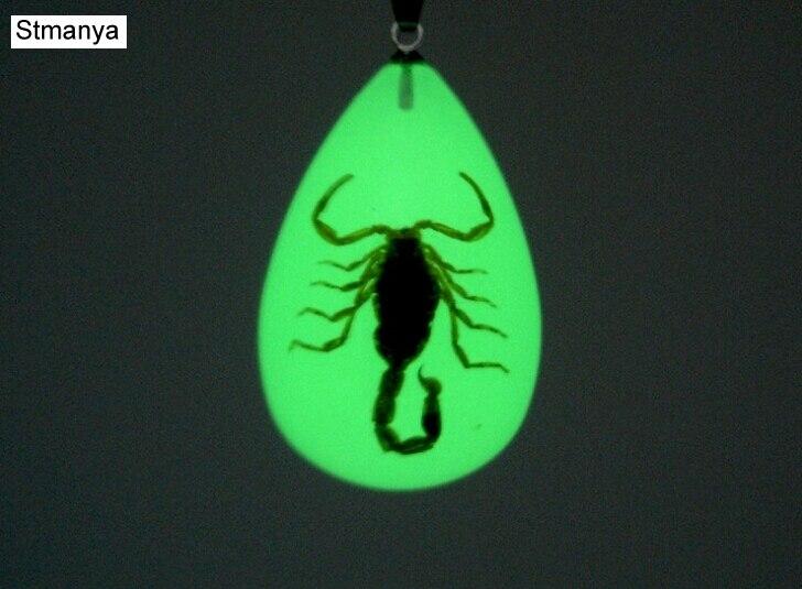 цена на Luminous Real Scorpion Key Chain - New Luminous Product Real Crab and Scorpion Keychain bag Car key Ring