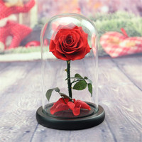 Flone Artificial Rose Everlasting Flower Single Branch Rose Glass Cover For Chinese Valentine's Day Present Home DIY Decoration
