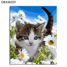 DRAWJOY Framed DIY Picture DIY Painting By Numbers Cat Picture Painting & Calligraphy Wall Art GX3219 40*50cm