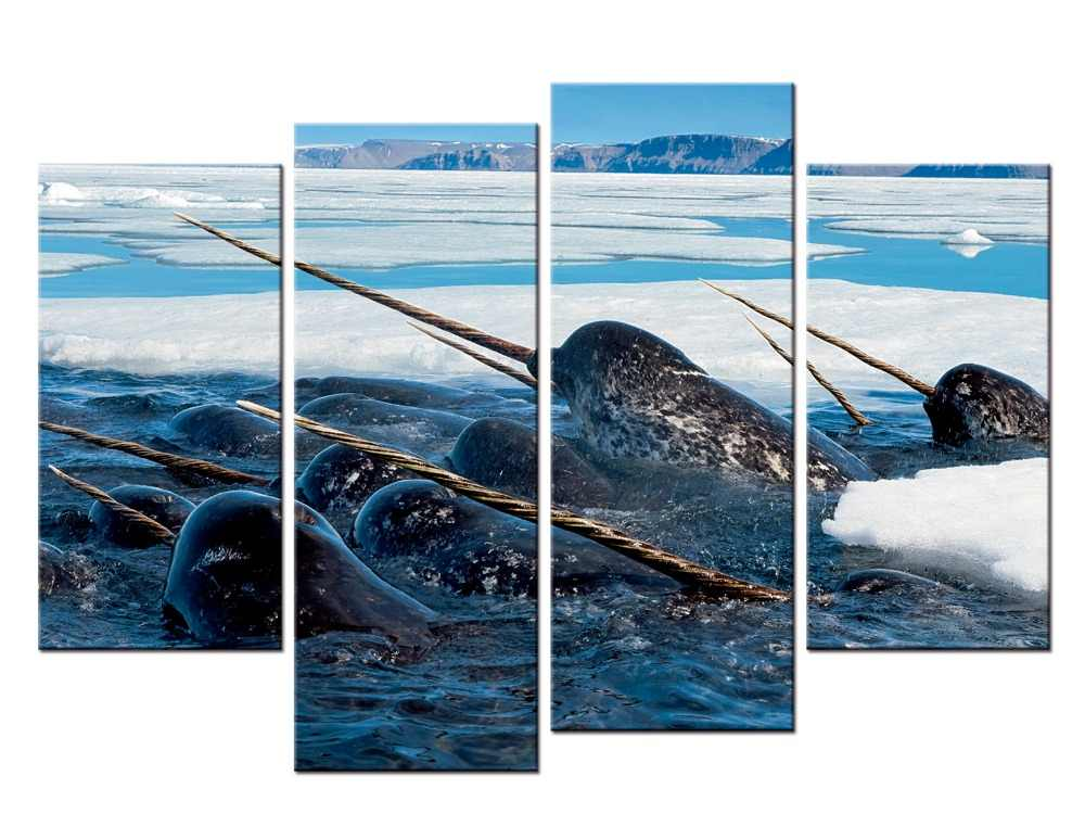 4 pieces / set Sea Life Narwhal  canvas painting wall art poster print Pictures Living room home Decor wall hanging