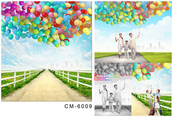 Photographic Camera Background Balloons In Blue Sky Wide Road Green Land For Wedding Photo Shoots Real Backdrop for Photo Studio