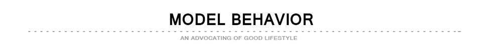 MODEL BEHAVIOR-960