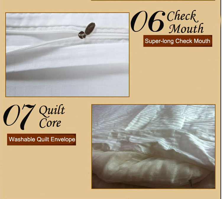 Mulberry Silk Quilt 18