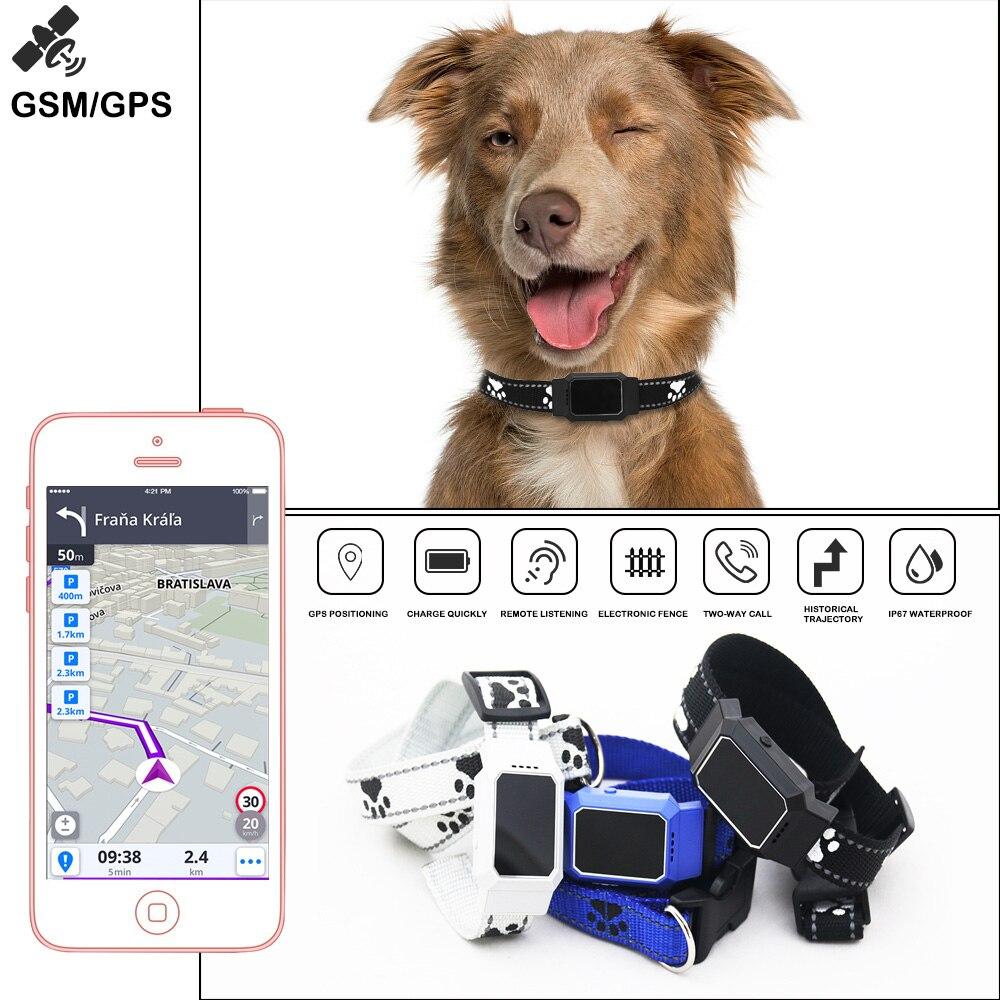 GPS Pet Tracker collier pour chiens chats GSM WiFi LBS en temps réel APP suivi localisateur Pet Anti perdu intelligent GPS dispositif Geofence