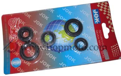 110cc Engine Oil Seal
