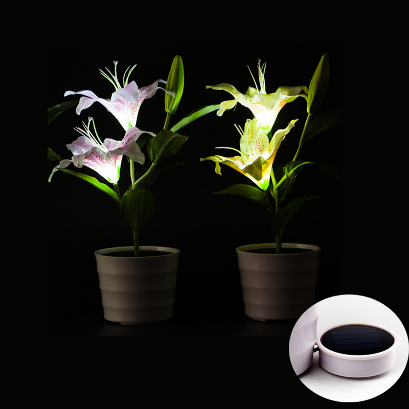 Solar Powered Lily Lights With Led Mood Lighting In Each