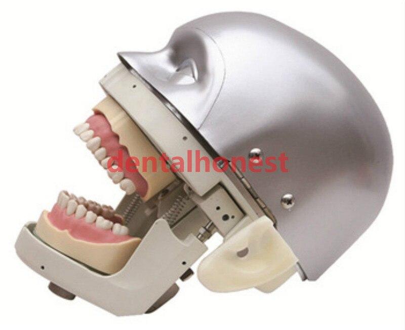 Dental Simulator Manikin Phantom Head demonstrations practical exercises tools new 2019 in Teeth Whitening from Beauty Health