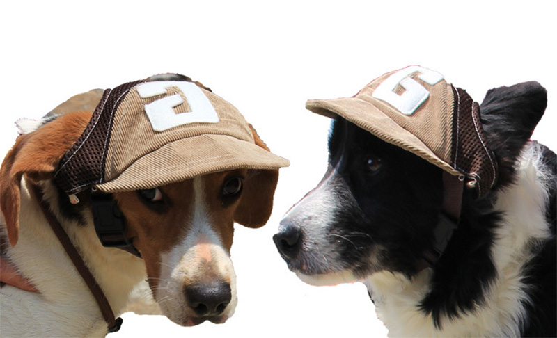 013f275de08 JORMEL Pet Dog Outdoor Baseball Cap Hat With Ear Holes Canvas Small ...