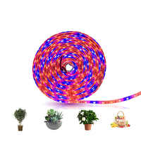 LED 5M Grow Light Strip S5050 3/4/5 Red 1 Blue Full Spectrum IP65 Phyto Lamp DC12V Fitolamp for Greenhouse Hydroponic Plant Grow