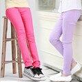 2016 Marca Meninas Leggings de Cores Doces Para Crianças Primavera Outono Moda Calças Das Crianças Calças de Algodão Calças Bonito Da Escola Dos Miúdos