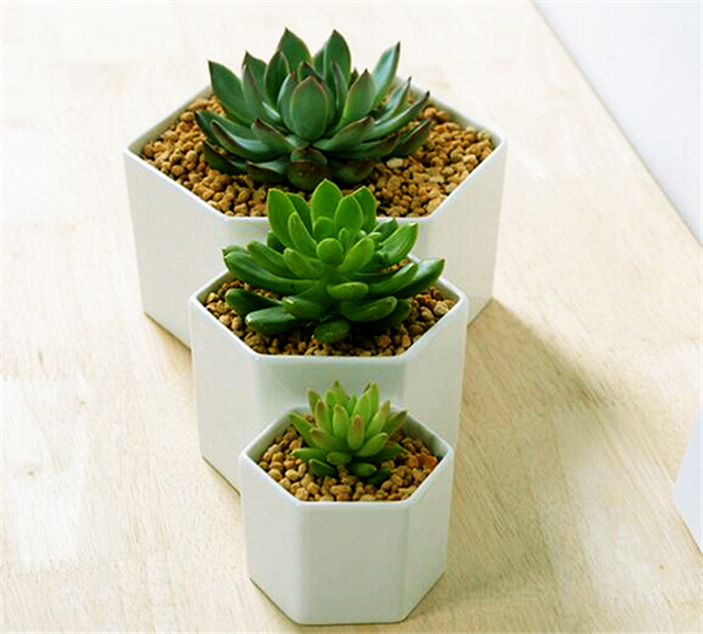 Bon Great Idea For Small Plants!Simple Hexagon Ceramic Flower Pot,White  Succulents Planter Flowerpot