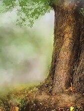 SHENGYONGBAO Vinyl Custom  Photography Backdrops Props Old trees theme Digital Photo Studio Background NHSHD-10123