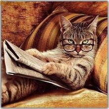 Алмазная живопись мозаика вышивка чтение кошки Полная работа
